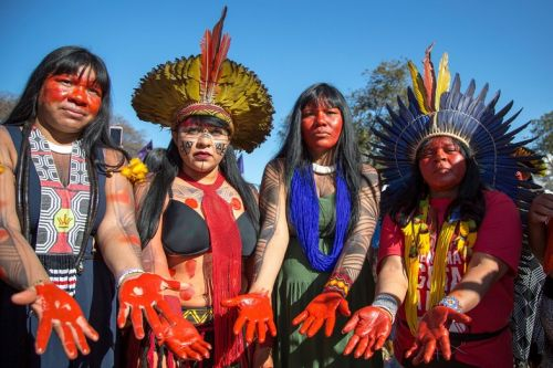 Inside the indigenous fight to save the Amazon rainforest