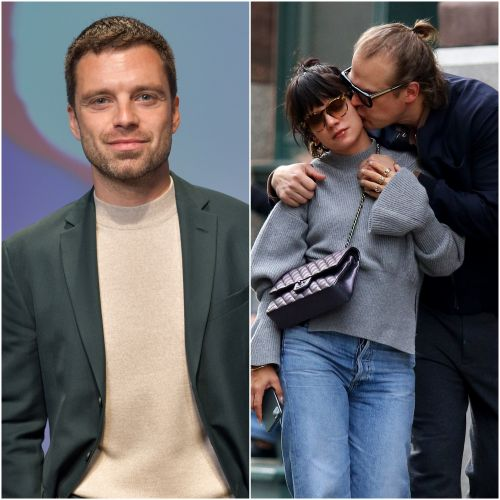 Sebastian Stan Admits He Googled Lily Allen After Hearing She Was Dating 'Stranger Things' Star David Harbour
