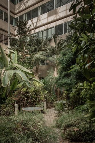 How An Abandoned 1970s Office Block Became a Tropical Dystopia