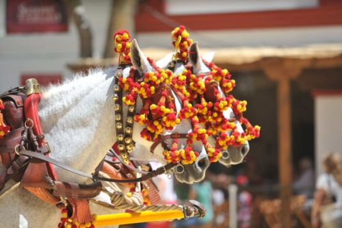 The Best Locations for Horse Riding in Spain