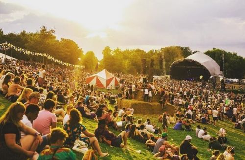 Festival organisers call for greater financial protections amid coronavirus