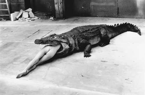 Bad or Beautiful: This Film Explores the Complex Legacy of Helmut Newton