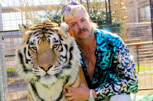 'Tiger King' fans, including Cardi B, want to free Joe Exotic
