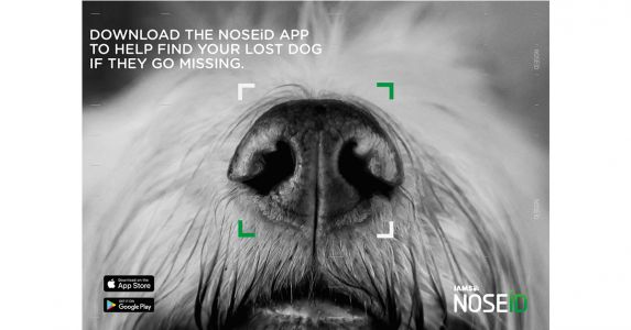 Unique New Mobile App Helps Bring Lost Dogs Home